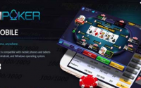 Most Common Poker Terms